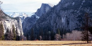 Yosemite from the Meadow